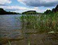 Jezioro D³ugie w Niezabyszewie